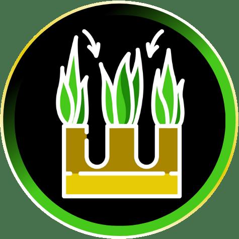 Core Lawn Aeration Icon