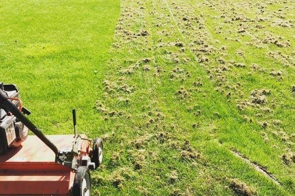 lawn dethatching near me